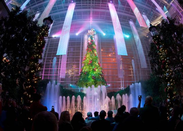 Christmas Nighty Tree Lighting Show