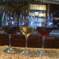 Featured-Image-Yadkin-Wines