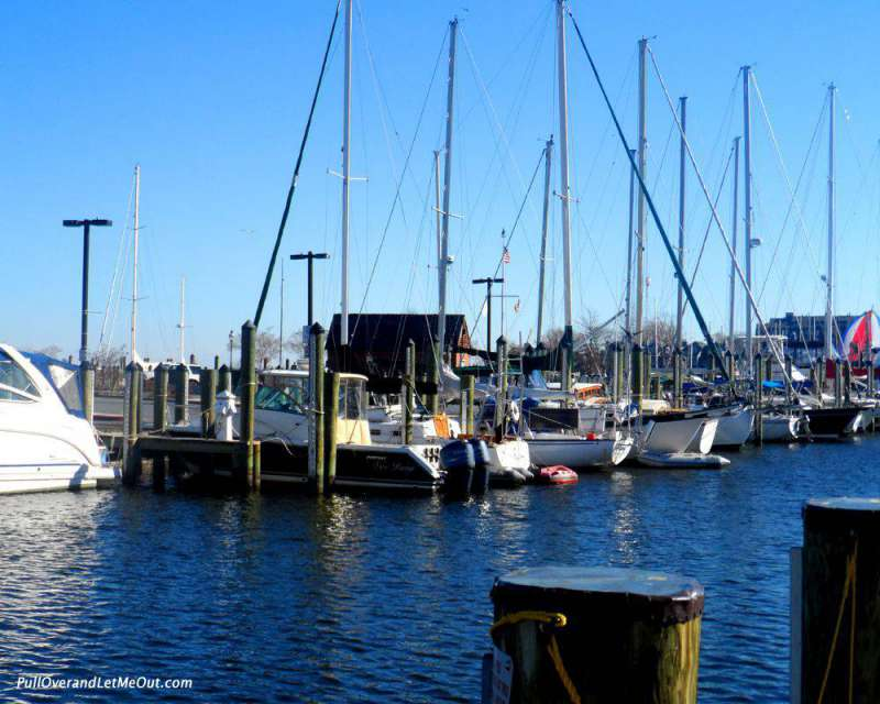 "Annapolis has earned the name ""America's Sailing Capital."""