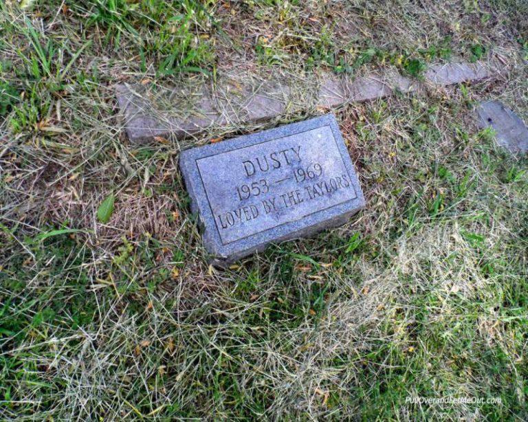 Pet headstone in a cemetery