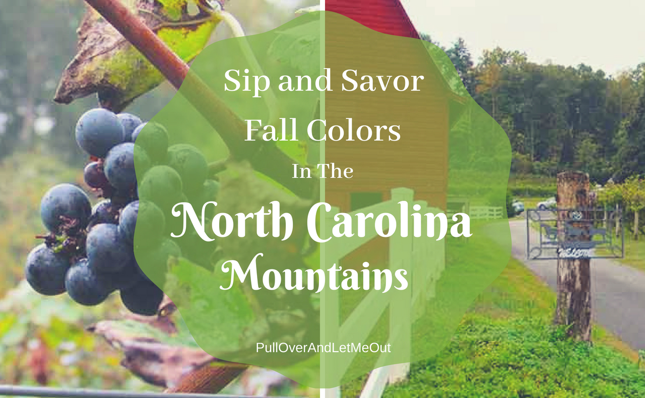 Fall Colors North Carolina Mountains PullOverAndLetMeOut
