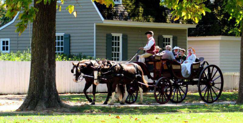 People riding in a horse drawn carriage in Colonial Williamsburg