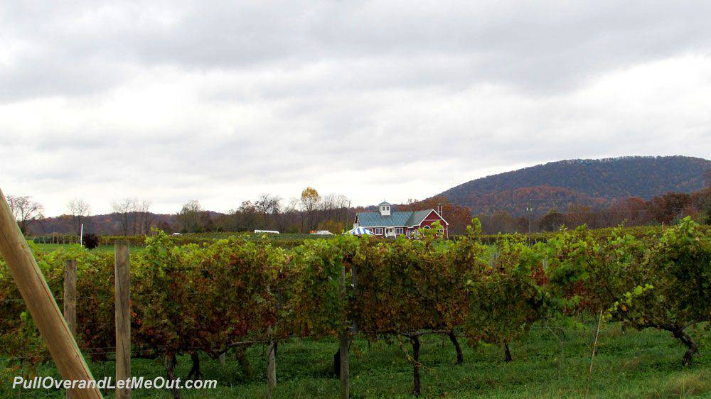 drive-up-to-winery---PullOv