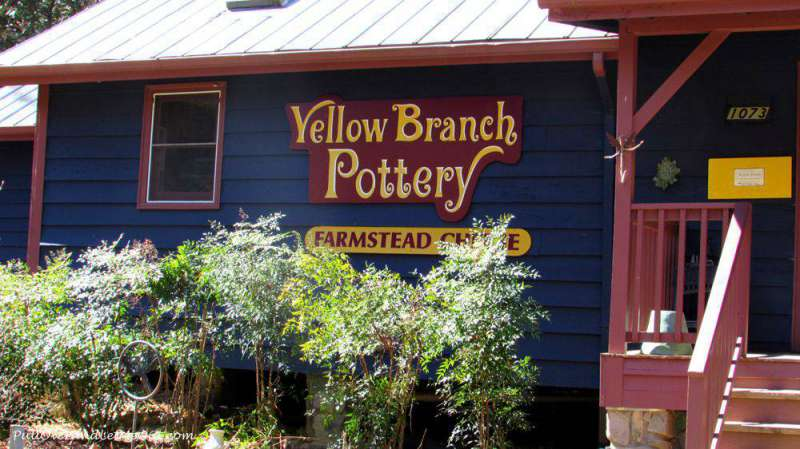 Yellow-Branch-sign