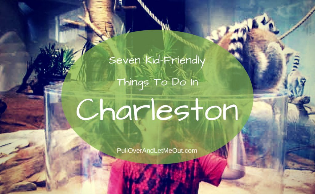 Seven Kid-Friendly Things To Do In Charleston PullOverAndLetMeOut