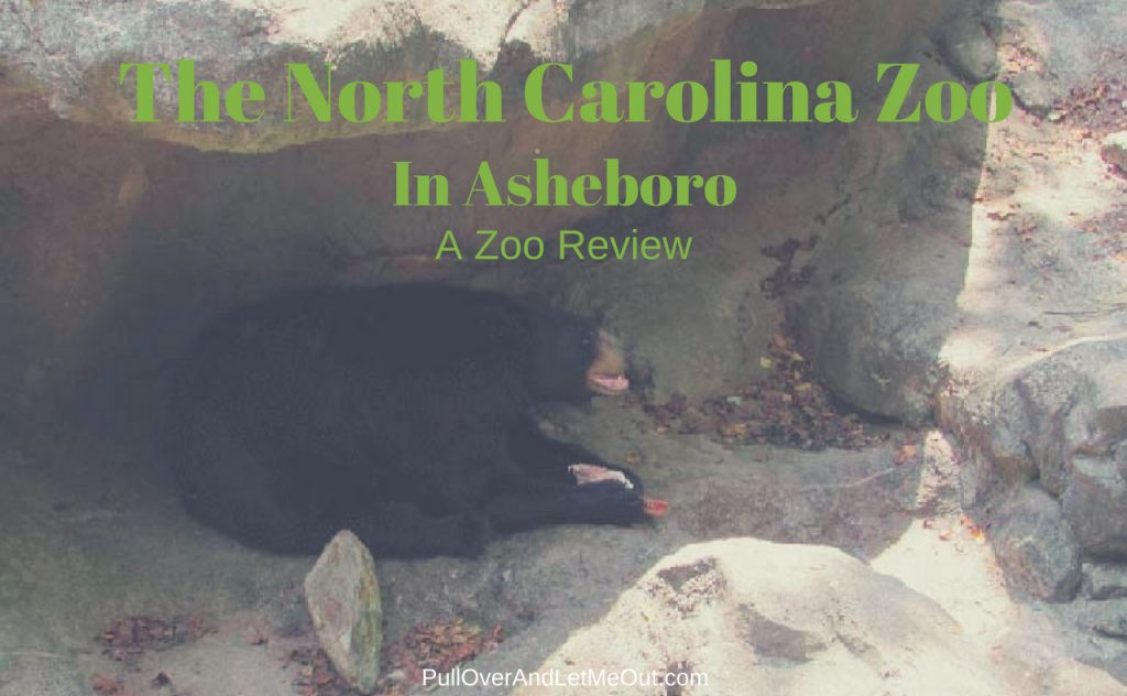 The North Carolina Zoo PullOverAndLetMeOut