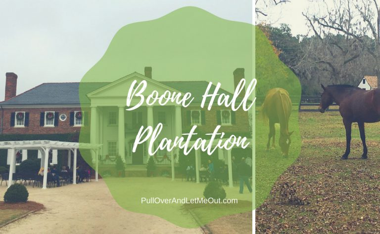 Five Things That Make Boone Hall Plantation a 'Must-See' When Visiting Charleston