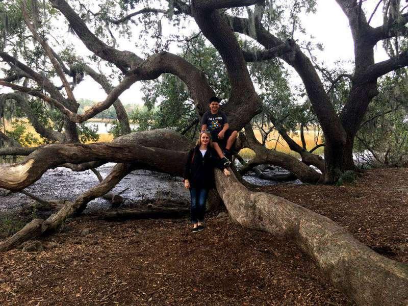 tree-at-Boone-Hall-Plantati