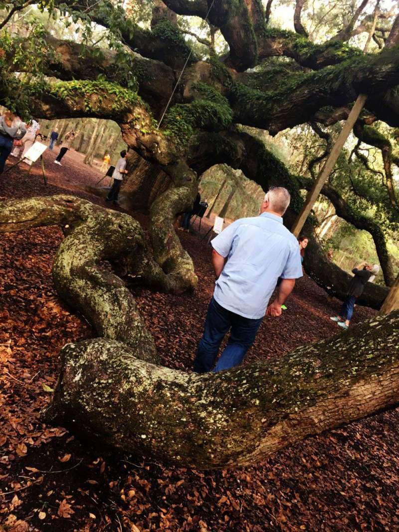 exploring-Angel-Oak-Johns-I