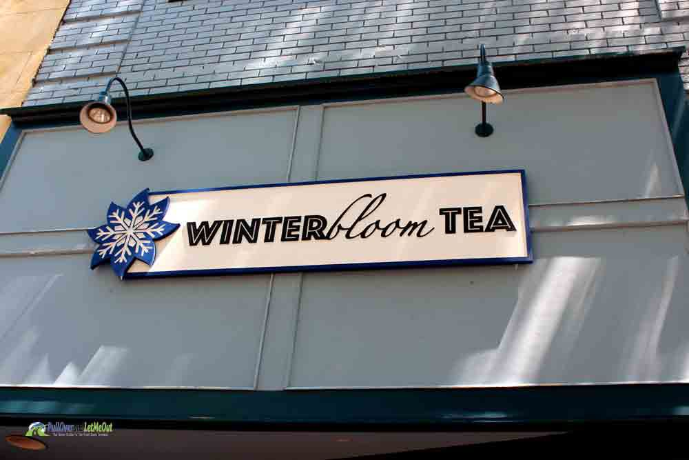 Winter Bloom Tea Fayetteville, NC PullOverandLetMeOut