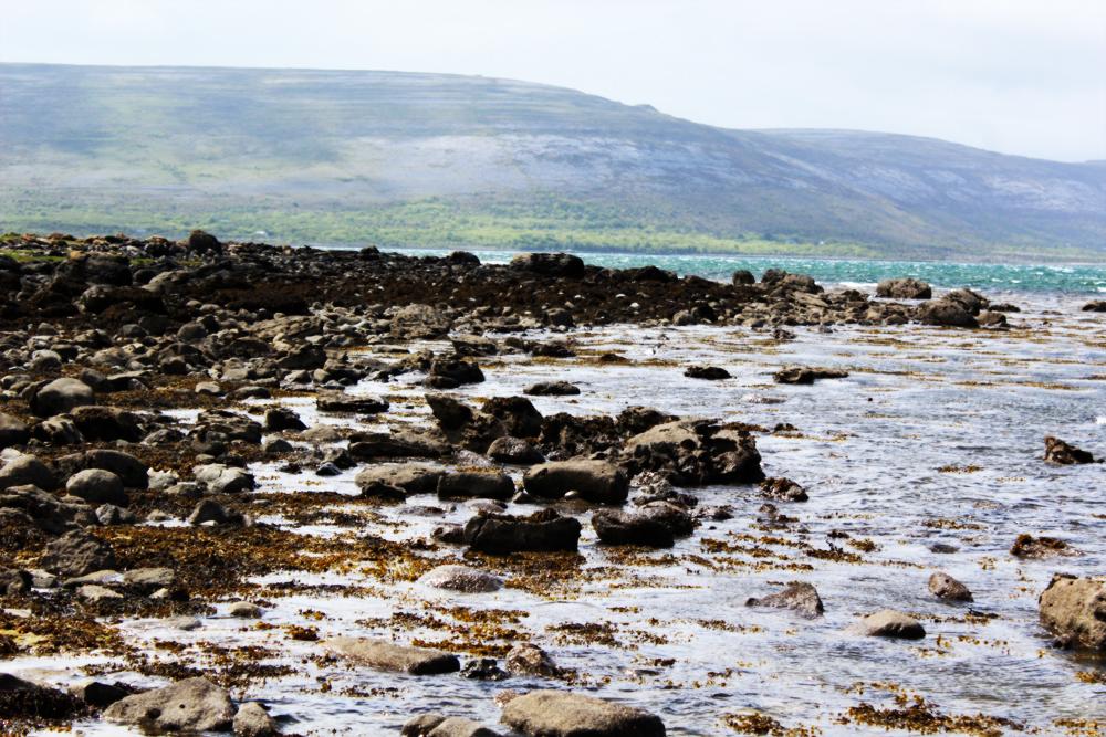 The Burren Visit Ireland Now PullOverAndLetMeOut