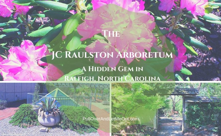 The JC Raulston Arboretum, A Hidden Gem in Raleigh, North Carolina
