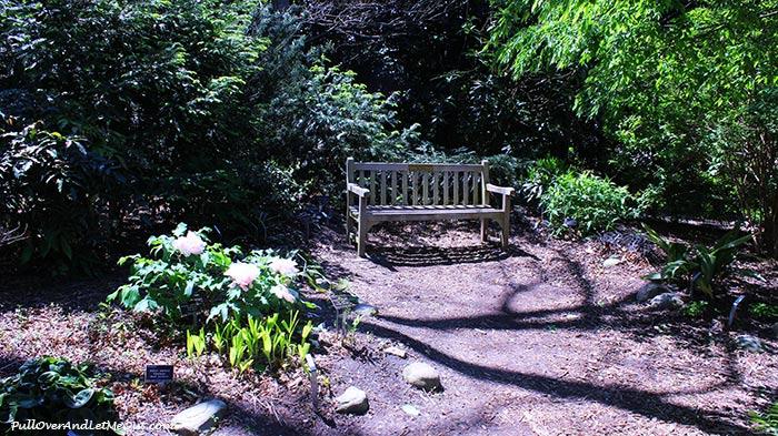 bench-on-path-JC-Raulston-Arboretum-Raleigh-PullOverAndLetMeOut