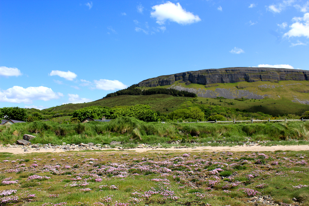 Knocknarea Co. Sligo PullOverAndLetMeOut