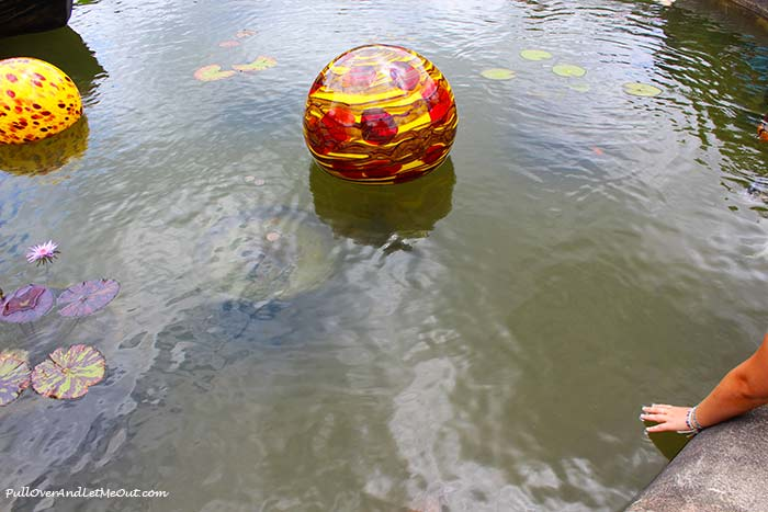 Biltmore-Chihuly-Niijima-Float-PullOverAndLetMeOut