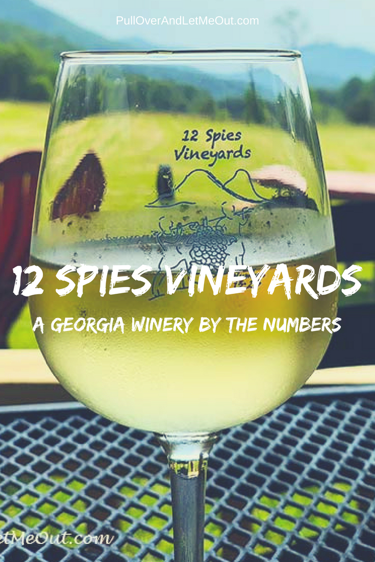 12 Spies Vineyards Georgia Winery situated in the northeastern corner of Georgia is a delightful winery with mountain views, live music, and delicious wines. #PullOverAndLetMeOut #12SpiesVineyards #GeorgiaWinery #GeorgiaWines #NorthGeorgiaWinery #WineTasting #WineryTours #WineryTravel #travel #winetravel #vineyards #grapevines #vineyardtours