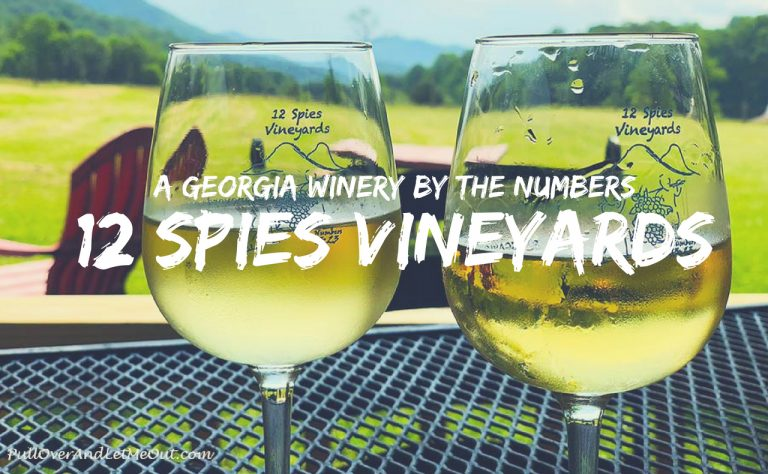 Georgia Winery 12 Spies Vineyards by The Numbers