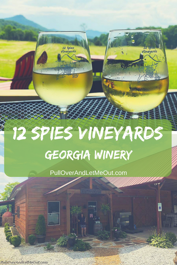 12 Spies Vineyards situated in the northeastern corner of Georgia is a delightful winery with mountain views, live music, and delicious wines. #PullOverAndLetMeOut #12SpiesVineyards #GeorgiaWinery #GeorgiaWines #NorthGeorgiaWinery #WineTasting #WineryTours #WineryTravel #travel #winetravel #vineyards #grapevines #vineyardtours