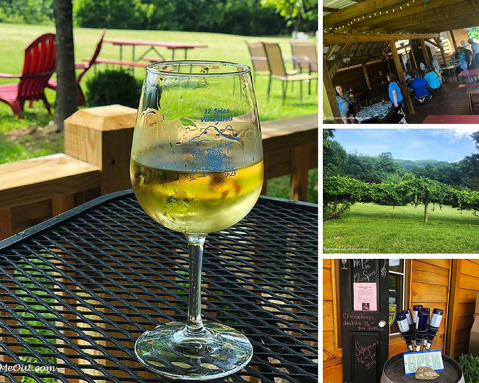 12-Spies-Vineyards-veranda-PullOverAndLetMeOut-collage