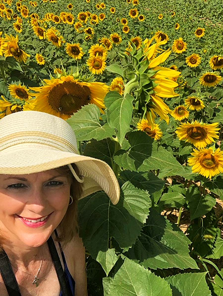 AM-hat-Dix-Sunflower-Field-Raleigh-PullOverAndLetMeOut