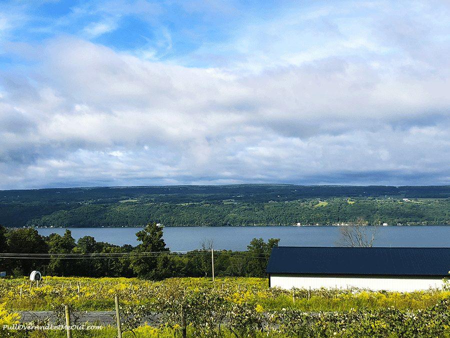 View-of-Seneca-Lake-Finger-Lakes-Distilling-PullOverAndLetMeOut