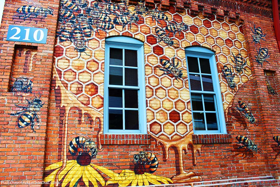 Swarm-Burts-Bees-Durham-Street-Art-PullOverAndLetmeOut