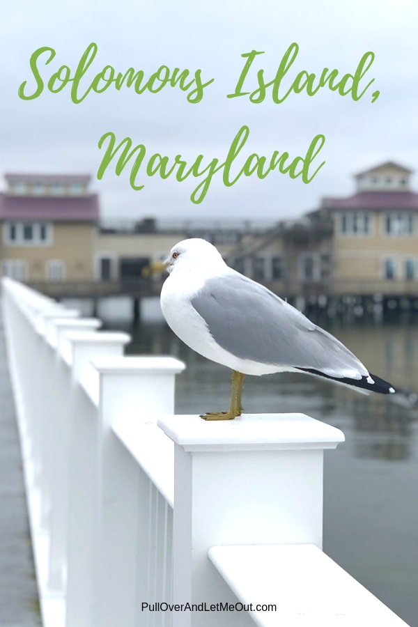 Solomons Island, Maryland is a charming waterfront town ideal for a weekend getaway or Saturday excursion. Situated at the southernmost point of Calvert County where the Patuxent River joins the Chesapeake Bay, it's about an hour and a half away from Washington, DC. #PullOverAndLetMeOut #SolomonsIsland #Maryland #southernMaryland #CalvertCounty #ChesapeakeBay #Riverwalk #historic #travel #maritime #lighthouse