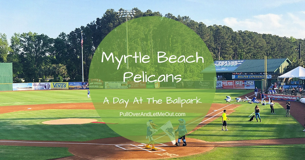 Myrtle Beach Pelicans PullOverAndLetMeOut