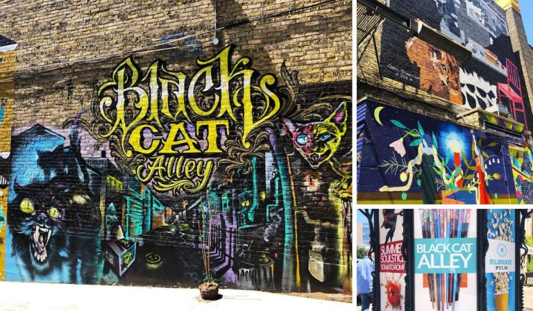 Collage of pictures from Black Cat Alley. PullOverAndLetMeOut