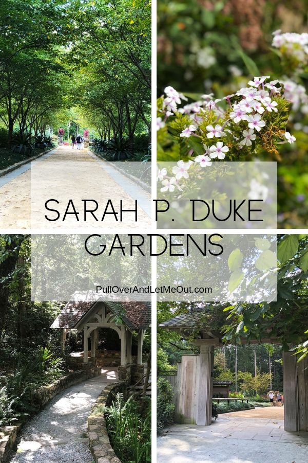 A Pinterest pin for Sarah P. Duke Gardens in Durham, NC