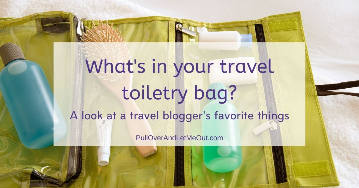 Travel toiletry bag PullOverAndLetMeOut