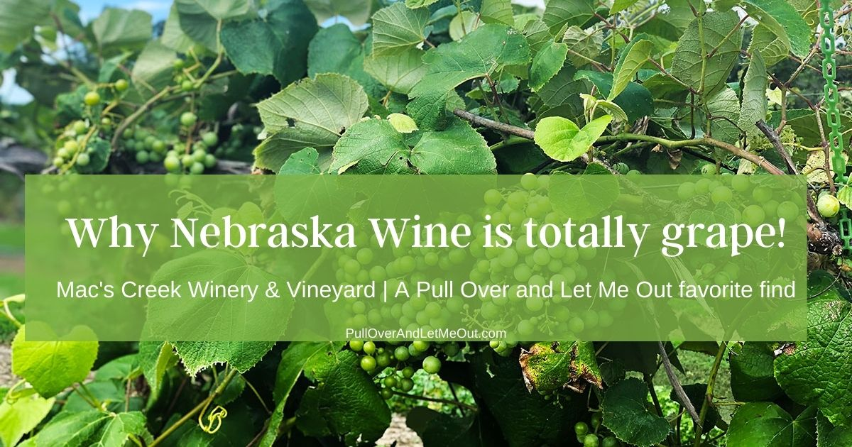 Why Nebraska Wine is Totally Grape!