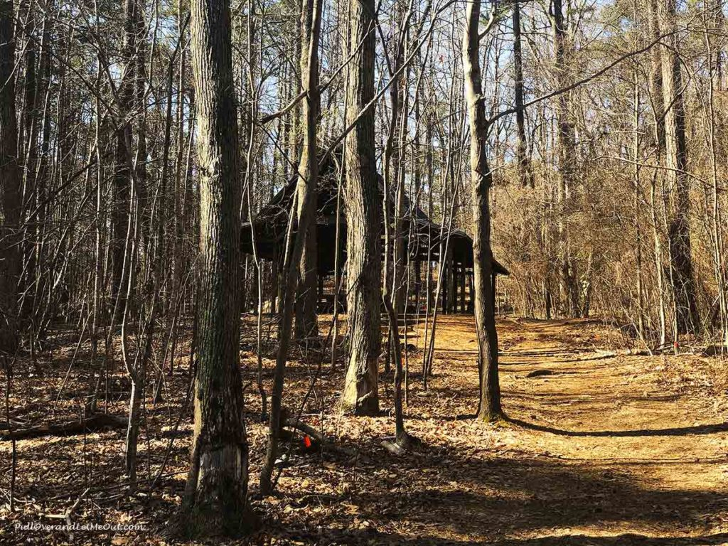 a field classroom structure in the woods