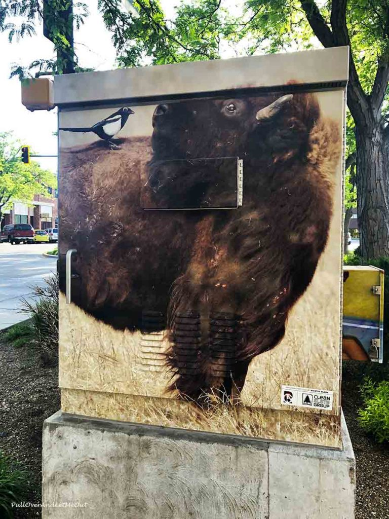 A power box with a buffalo painted on it
