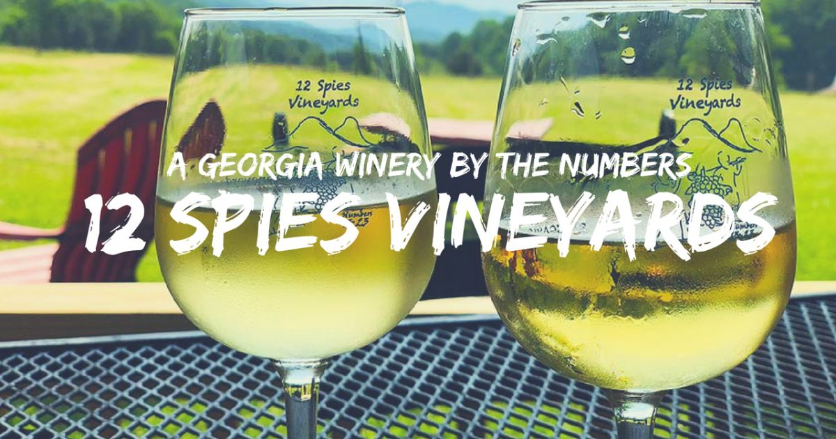 Georgia Winery 12 Spies Vineyards By The Numbers PullOverAndLetMeOut.com