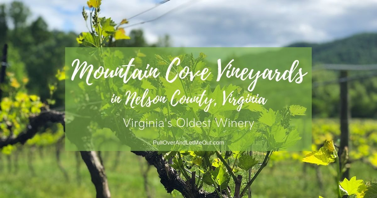 Cheers to Mountain Cove Vineyards Nelson County PullOverAndLetMeOut.com