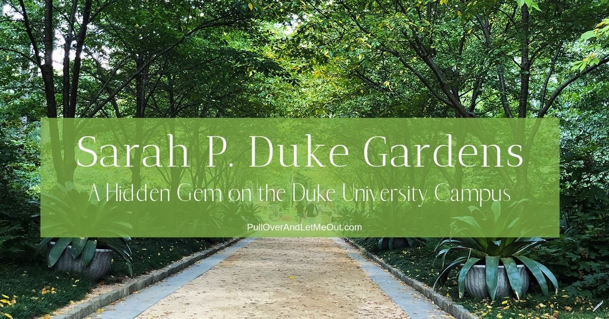 Cover photo for the Sarah P. Duke Gardens PullOverAndLetMeOut