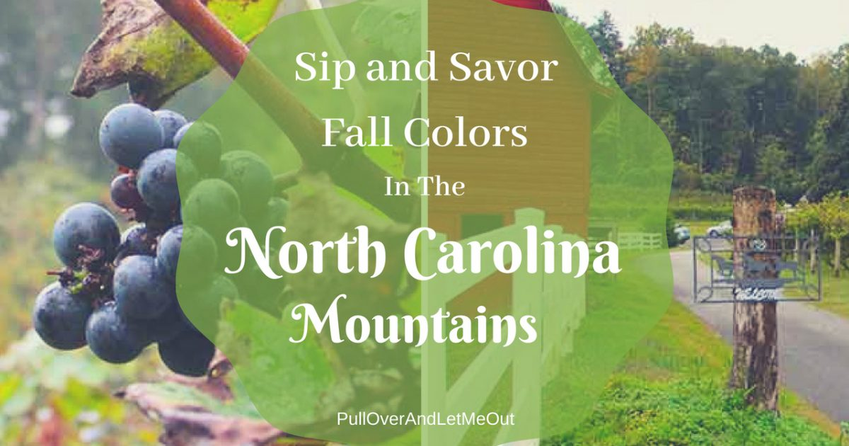 Fall Colors North Carolina Mountains PullOverAndLetMeOut